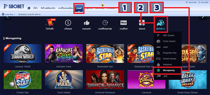 จุดเด่นของเกม Slot Microgaming